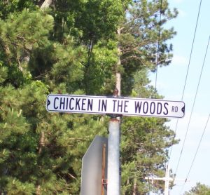 Quirky Street Names in Wisconsin - like Chicken in the Woods