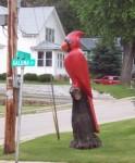 Cardinal in Darlington along Highway 23