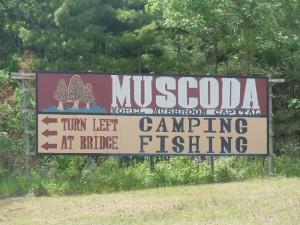 muscodabb2_800