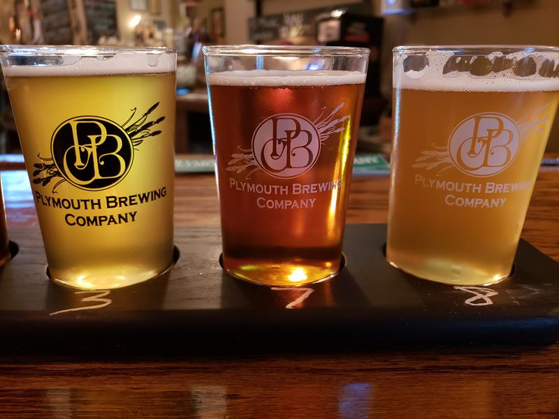 Sampler at Plymouth Brewing Company