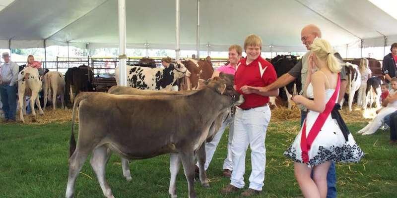 Platteville Dairy Days