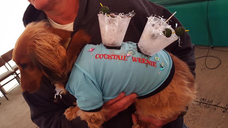 Sheboygan Oktoberfest weiner dog entrant