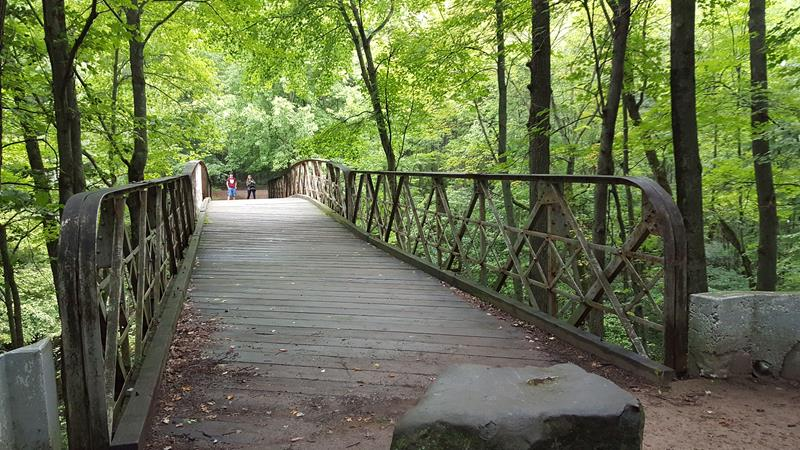 Rumble Bridge in Irvine Park, Chippewa Falls