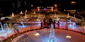 Janesville Holiday Light Show at Rotary Botanical Gardens, Janesville