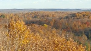 ogema_timmshill_towerview03