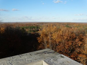 ogema_timmshill_towerview14