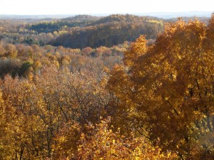 ogema_timmshill_towerview16