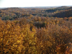 ogema_timmshill_towerview17