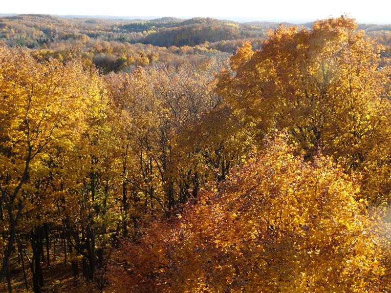 Fall colors from Timms Hill in Wisconsin
