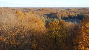 ogema_timmshill_towerview24