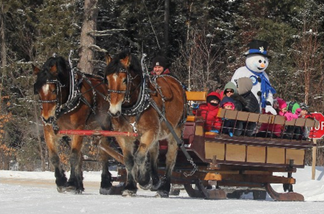 Northwoods Blizzard Blast wagon ride