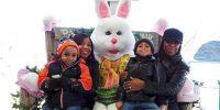 Apple Holler Big Bunny Weekends