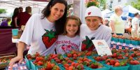 Cedarburg Strawberry Fest