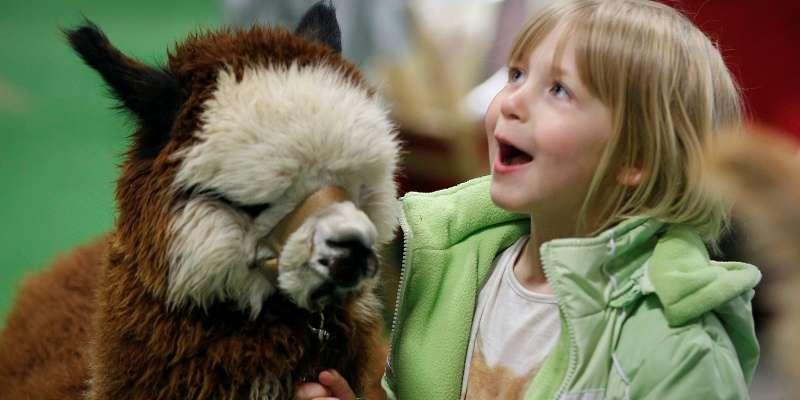 Wisconsin Alpaca & Fiber Fest