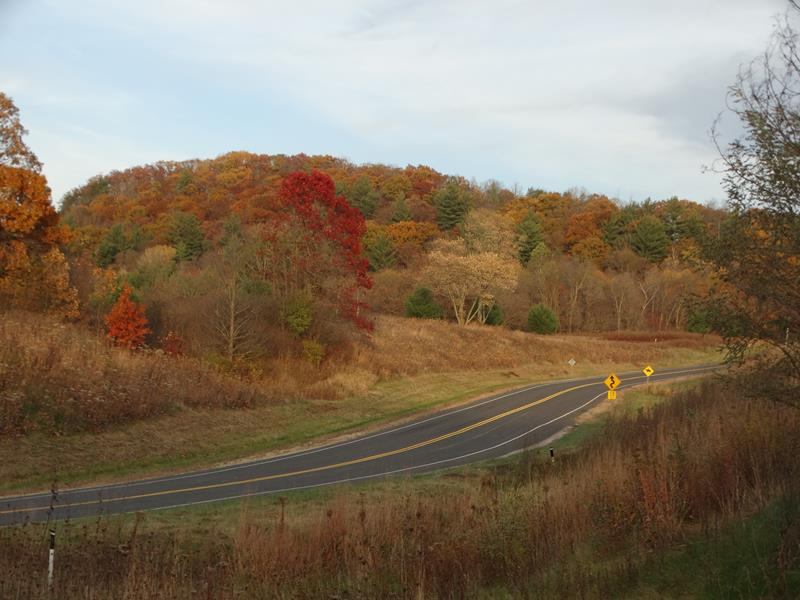 Highway 131 near Ontario in fall