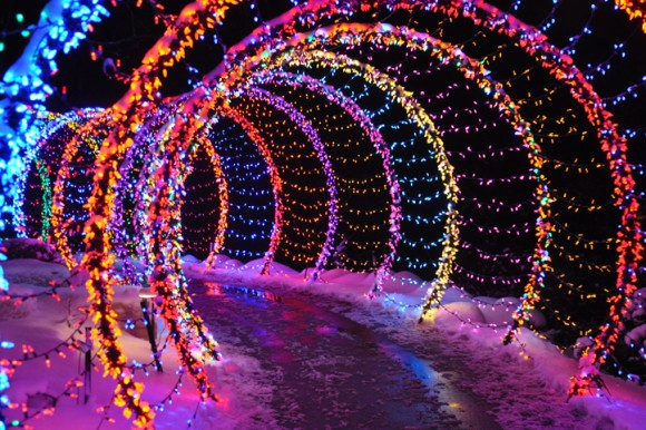 WPS Garden Of Lights, Holiday Lights Wisconsin