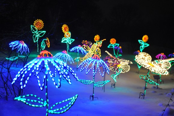 WPS Garden of Lights photo courtesy of WLUK/FOX11 in Green Bay & WPS Garden of Lights at Green Bay Botanical Garden | State Trunk Tour azcodes.com