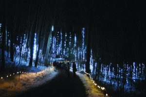WPS Garden of Lights