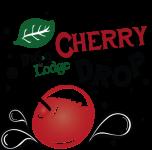 Door County Cherry Drop poster. NYE 2018-2019
