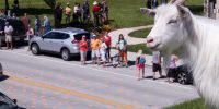 Sister Bay Roofing of the Goats Parade