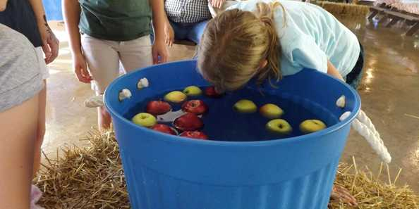 Bobbing for apples during Colorama Weekend in Land O'Lakes