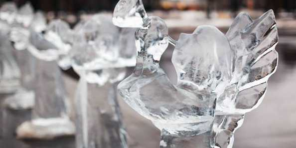 Burlington Ice Festival