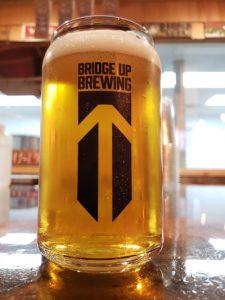 Full glass at Bridge Up Brewing Company, Sturgeon Bay