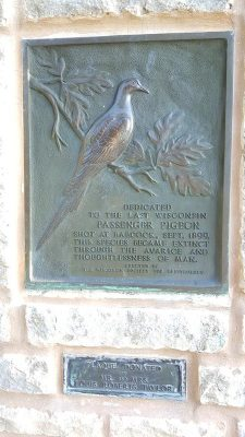Passenger Pigeon monument at Wyalusing State Park, Wisconsin