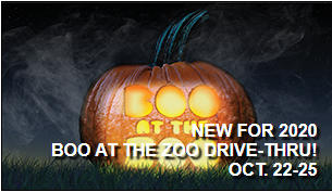 Milwaukee County Boo at the Zoo Drive-Thru, October 22-25, 2020