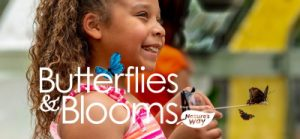 Butterflies & Blooms at Green Bay Botanical Garden