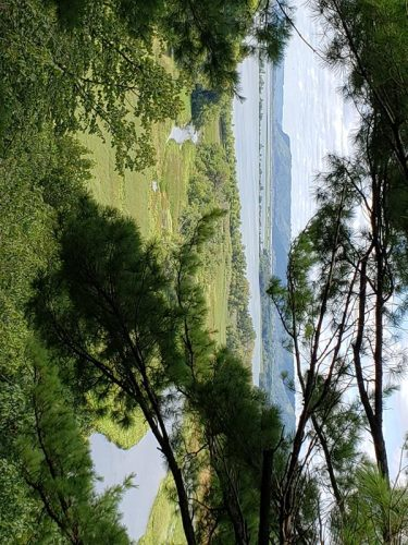 Mississippi River and slough through the trees at Perrot State Park, Trempealeau, Wisconsin