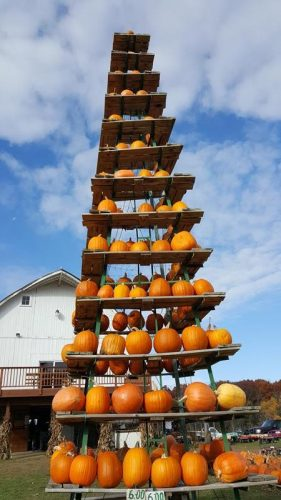 Pumpkins stacked high at Mommsen's, along County SS (former U.S. 53) between Cameron and Rice Lake, Wisconsin, in Barron