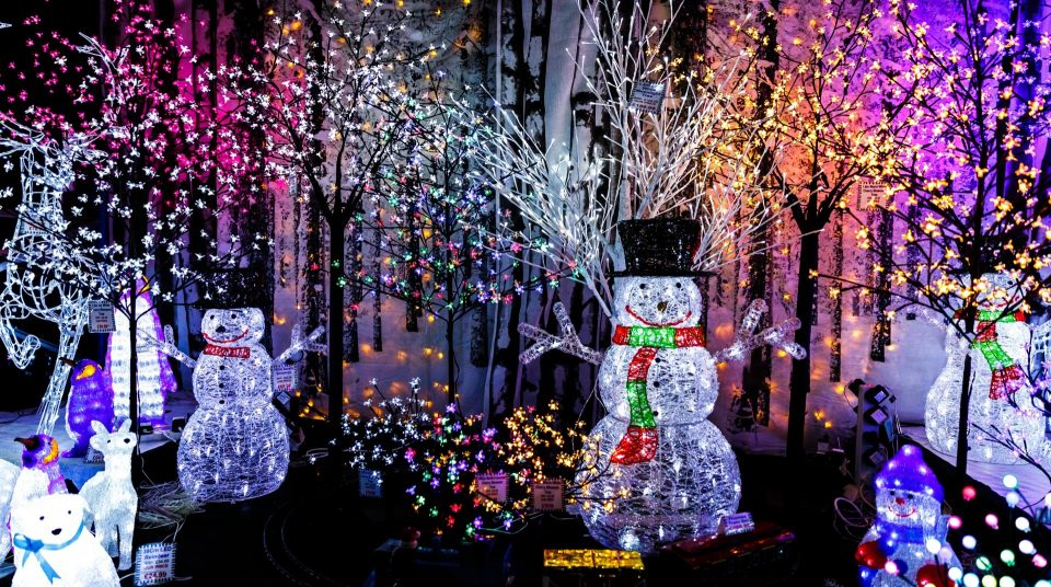 Display at Boerner Botanical Gardens Winter Wonders Drive-Thru Holiday Light Show