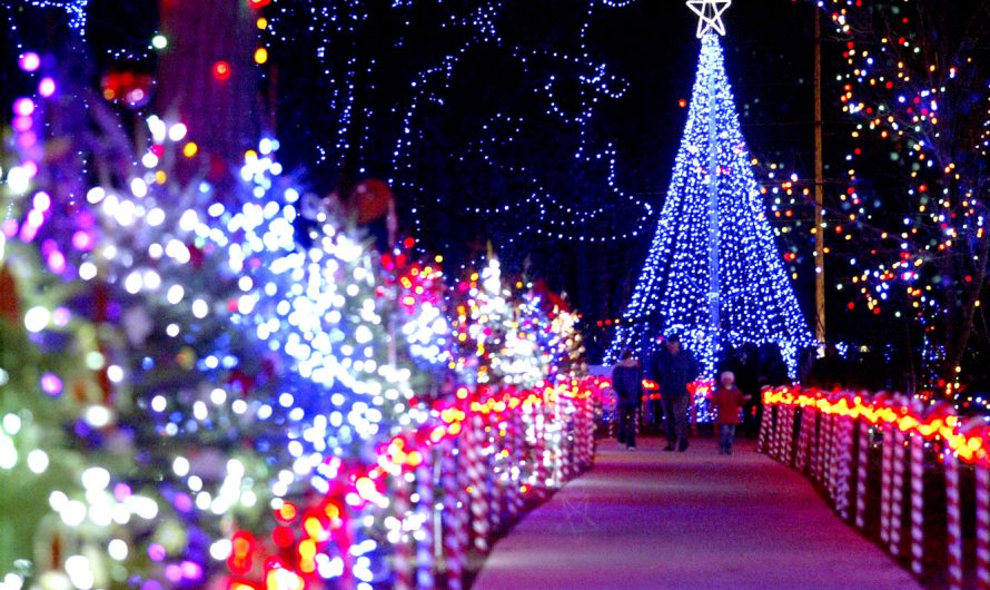 Marshfield Rotary Winter Wonderland lights in Marshfield, Wisconsin