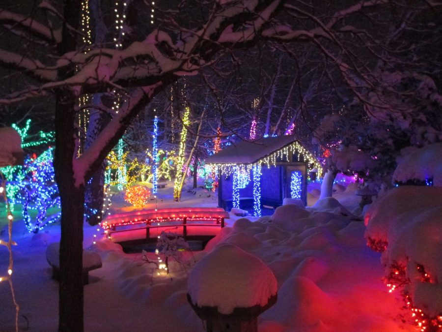 Janesville Holiday Lights at Rotary Botanical Gardens