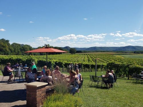 View from the patio at Elmaro Vineyard & Winery, Trempealeau, Wisconsin