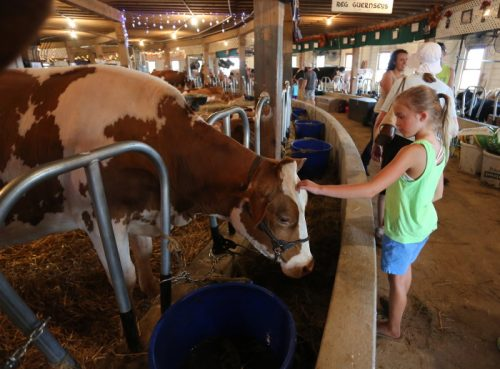 Central Wisconsin State Fair, held annually in Marshfield, Wisconsin