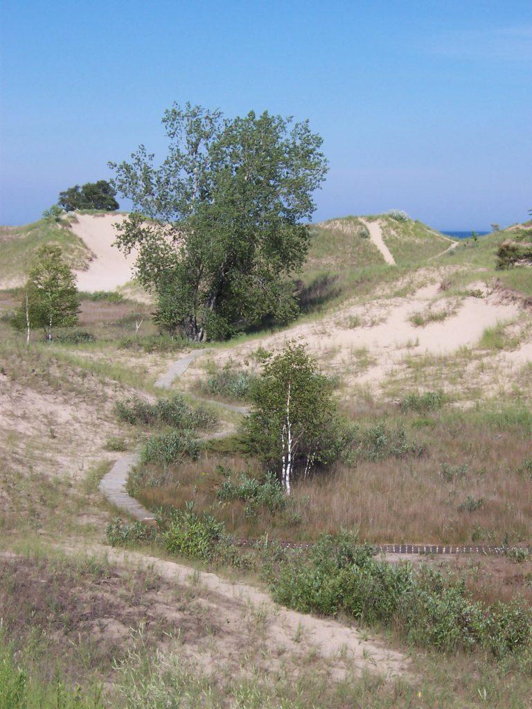 Dunes by Lake Michigan at Kohler-Andrae State Park, south of Sheboygan, Wisconsin