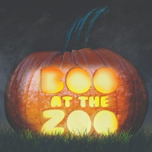 Milwaukee County Drive-Through Boo at the Zoo at Milwaukee County Zoological Gardens in Milwaukee, Wisconsin